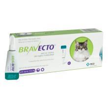 Bravecto Spot on для кошек 500 мг (6,25-12,5 кг) КАПЛИ