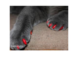 Антицарапки (колпачки на ногти)