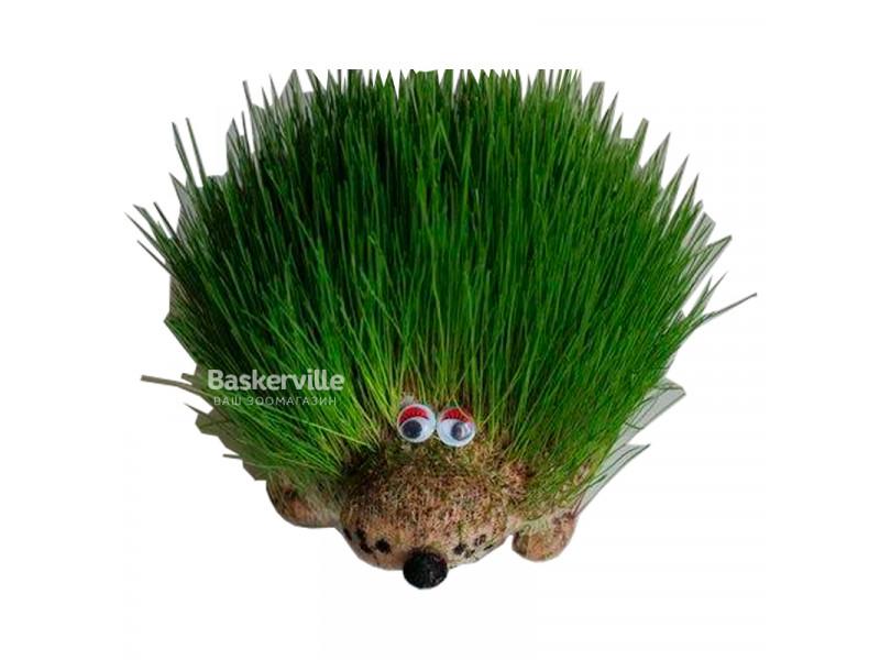 Декоративный газон Травянчик Ежик