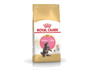 Сухой корм для котят Royal Canin Maine Coon Kitten