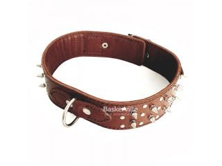 BEFORE Ошейник кожаный коричневый с шипами, ширина 50мм, длина 630мм