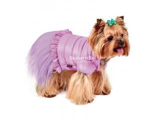 Жакет Pet Fashion Франческа S для собак