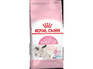 Royal Canin Mother&Babycat. Сухой корм для котят от 1 до 4 месяцев