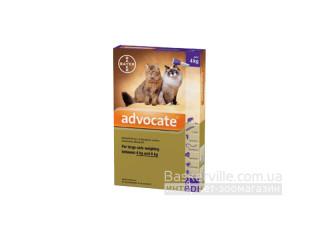 Advocate. Средство от паразитов. Для котов массой тела от 4 до 8 кг