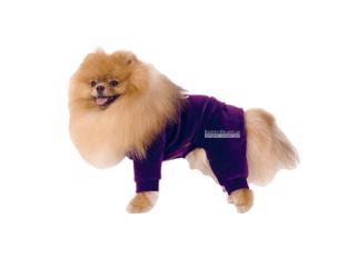 Pet Fashion. Комбинезон «Гламур»