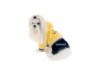 Pet Fashion. Комбинезон «Плюш»