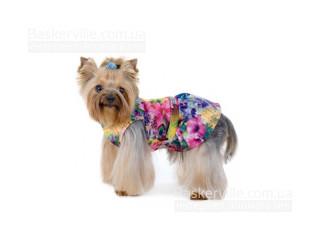 Pet Fashion. Платье «Камелия»