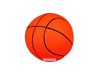 Trixie. Denta Fun. Игровой мяч с сигналом для зубов собаки «Баскет», 7.5 см
