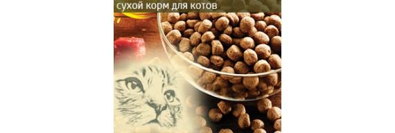 Сухой корм для котов